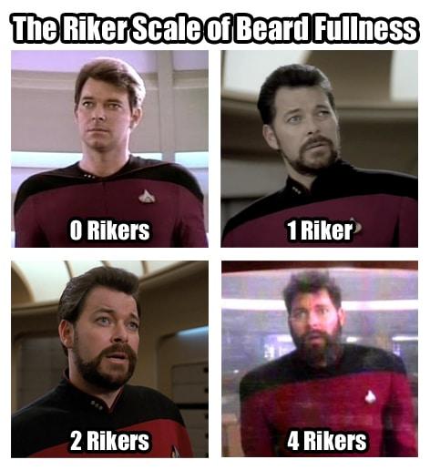 Riker scale
