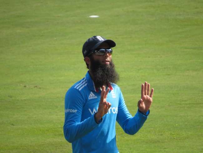 cricket beard