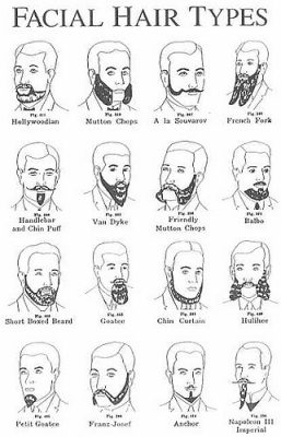 facial hair style names the beardo guide to beard styles and beard types beardilizer 8416 | beard types 257x400